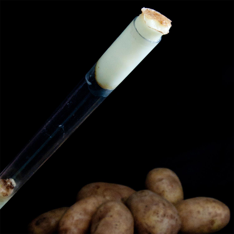 Potato Gun Launcher