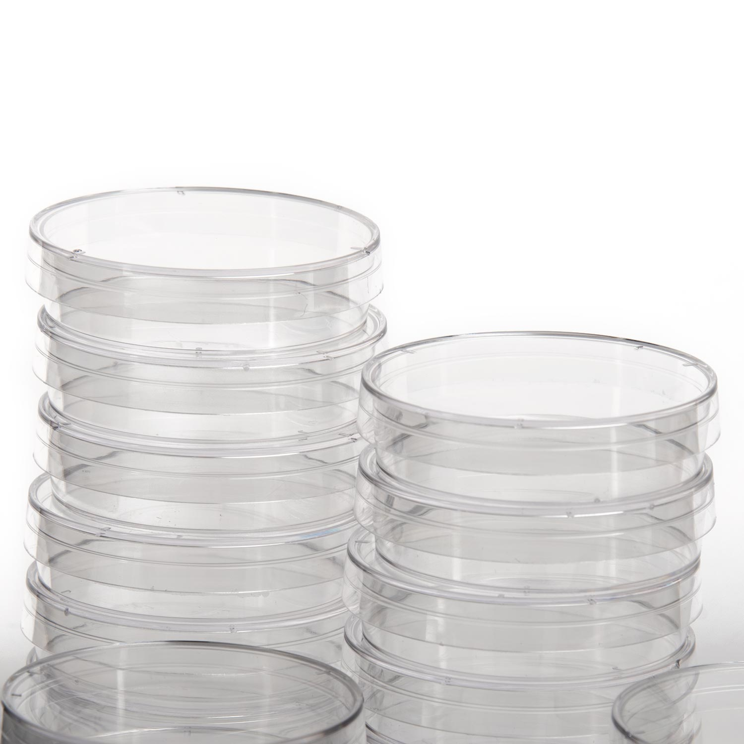 Petri Dish - 51 mm (2 in) - 20 pack